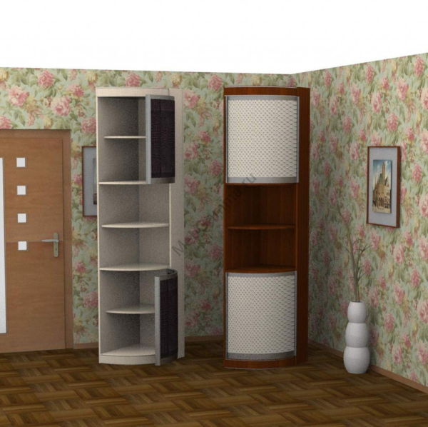 Радиусный шкаф-купе Радион-1