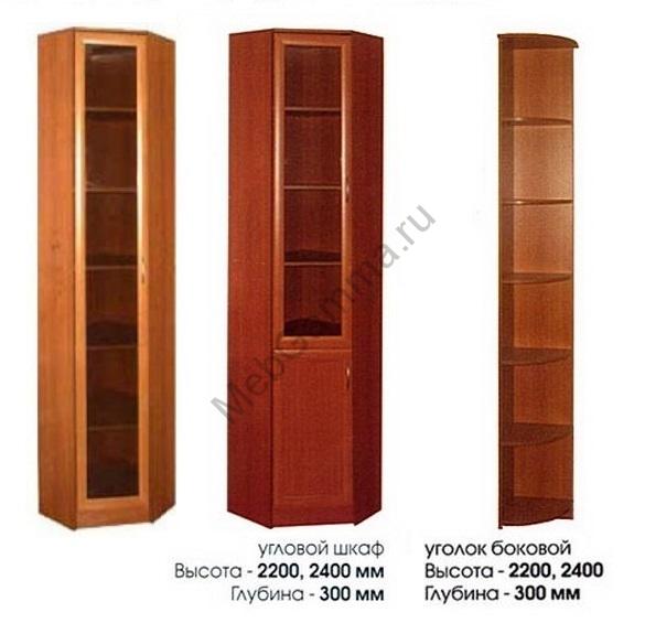 Угловой книжный шкаф Верона 1